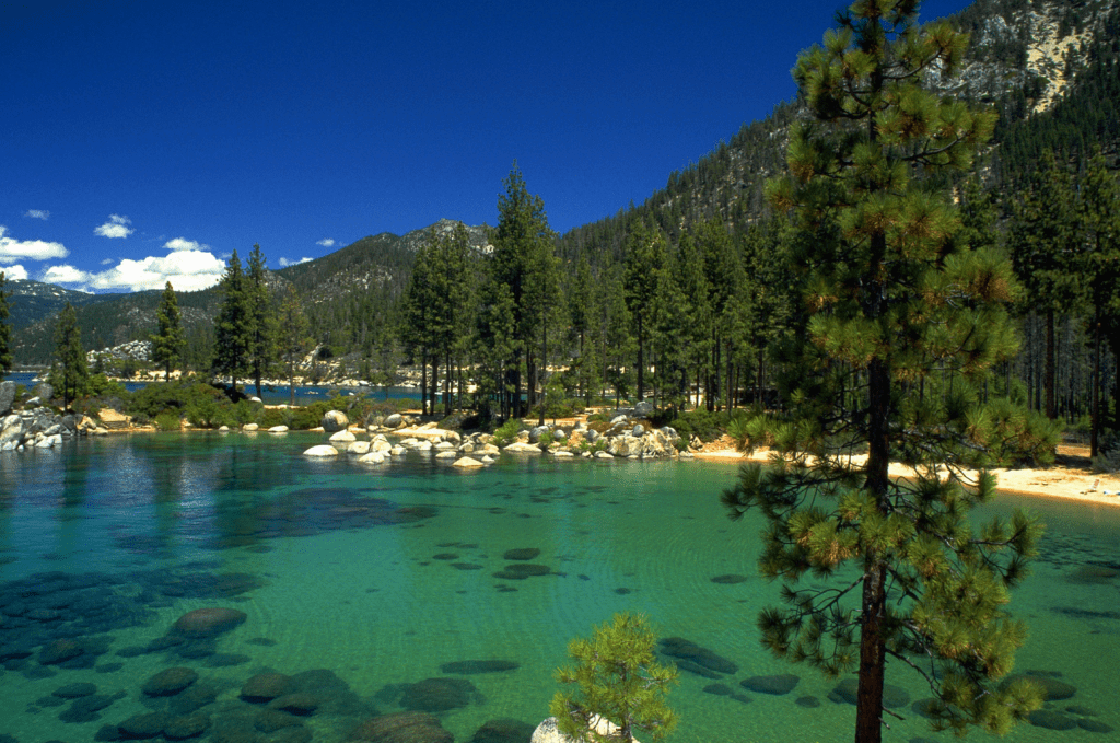 SEARCH FOR LAKE TAHOE REAL ESTATE WITH ALVIN STEINBERG CALL 800-666-4718
